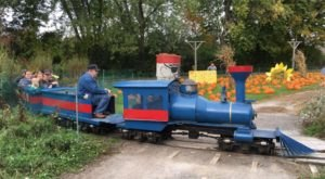 New York's Pumpkin Patch Train Ride Is A Great Way To Spend A Fall Day