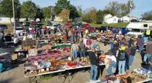 Everyone In St. Louis Should Visit This Epic Flea Market At Least Once