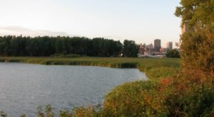 Most People Don't Realize This Enchanting Natural Oasis In Buffalo Even Exists