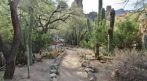 A Visit To Any Of Arizona's State Parks Proves Why They Were Voted Best In The Nation