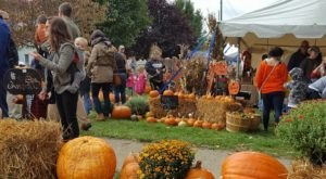 8 Harvest Festivals Around Pittsburgh That Will Make Your Autumn Awesome