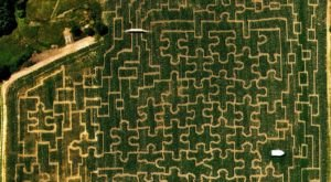 Get Lost In Vermont's Largest Corn Maze This Fall