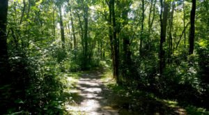 The Hiking Trail Hiding In Columbus That Will Transport You To Another World
