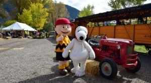The Great Pumpkin Patch Express, An Annual Train Adventure In Washington, Is Perfect For A Fall Day