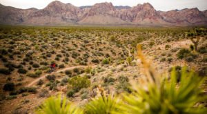You Must Add This Stunning And Historical Nevada Trail To Your Bucket List