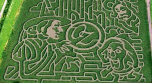 Get Lost In These 8 Awesome Corn Mazes Around Buffalo This Fall