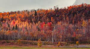 10 Picture Perfect Fall Day Trips To Take In Minnesota