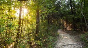 The Hiking Trail Hiding In Dallas – Fort Worth That Will Transport You To Another World