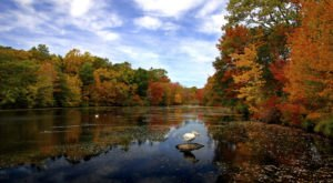 The Best Times And Places To View Fall Foliage In Connecticut