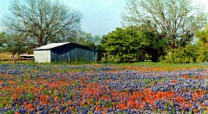15 Slow-Paced Small Towns Near Dallas – Fort Worth Where Life Is Still Simple