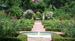 These Botanical Gardens In New Orleans Will Enchant You In The Best Way Possible