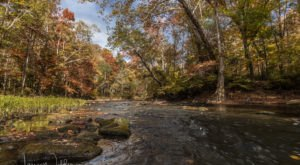 7 Short And Sweet Fall Hikes In Mississippi With A Spectacular End View