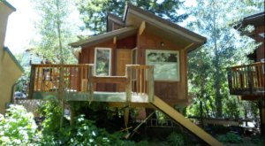 4 Little-Known Treehouses Hiding In Idaho That Make The Most Magical Getaways