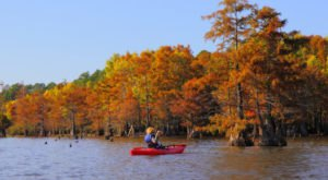 The Best Times And Places To View Fall Foliage In Louisiana