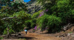 10 Hikes In Hawaii That Will Make You Forget That You're In Hawaii