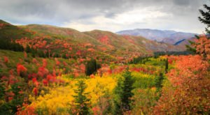 Here Are The Best Times And Places To View Fall Foliage In Utah
