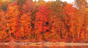 Here Are The Best Times And Places To View Fall Foliage In Columbus