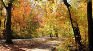 8 Secret Spots In Louisville Where Nature Will Completely Relax You