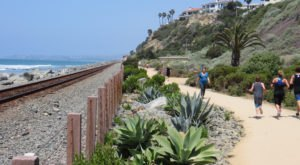 The Picturesque Beach Trail In Southern California That Feels Like A Daydream