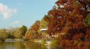 11 Picture Perfect Fall Day Trips To Take In Kansas