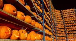 The Illinois Fall Festival With The World's Largest Display Of Jack-O-Lanterns You Simply Have To See