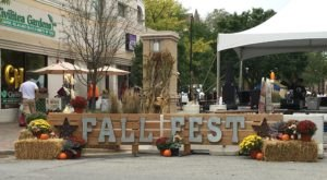 10 Harvest Festivals Around Chicago That Will Make Your Autumn Awesome