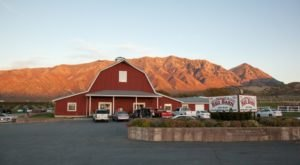 This Charming Cider Mill In Utah Will Have You Longing For Fall