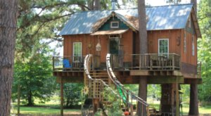 There's A Little-Known Tree House Hiding In Louisiana And You'll Want To Stay There Forever