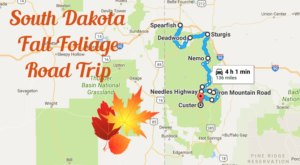 This Dreamy Road Trip Will Take You To The Best Fall Foliage In All Of South Dakota