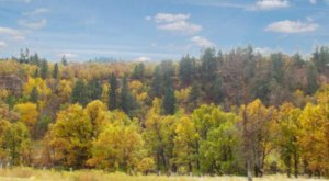 Here Are The Best Times And Places To View Fall Foliage In South Dakota