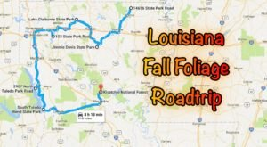 This Dreamy Road Trip Will Take You To The Best Fall Foliage In All Of Louisiana