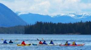 Spend A Day Kayaking With Orcas At This Magical Place In Alaska