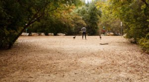 The Overlooked Park In Austin You should Visit Before It's Too Popular