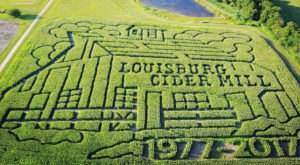 Get Lost In These 9 Awesome Corn Mazes Around Kansas City This Fall