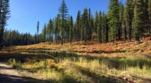The One Hikeable Lake In Idaho That's Simply Breathtaking In The Fall
