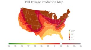 The Best Times And Places To View Fall Foliage In Texas