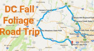 This Dreamy Road Trip Will Take You To The Best Fall Foliage In All Of DC