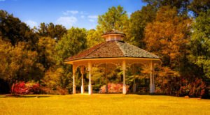 The Best Times And Places To View Fall Foliage In Alabama