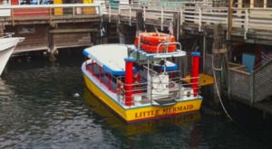 The Amazing Glass-Bottomed Boat In Northern California Will Bring Out The Adventurer In You