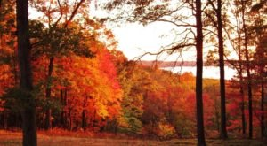 6 Short And Sweet Fall Hikes In Indiana With A Spectacular End View