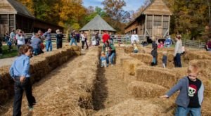 8 Harvest Festivals Around Washington DC That Will Make Your Autumn Awesome