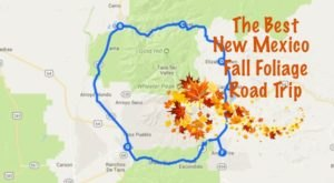 This Dreamy Road Trip Will Take You To The Best Fall Foliage In All of New Mexico