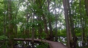 These 8 Hiking Spots Around Indianapolis Are Completely Out of This World