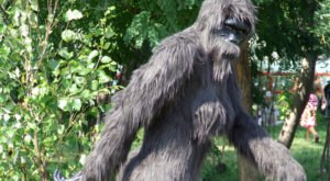 There's A Bigfoot Festival Happening In Oklahoma And You'll Absolutely Want To Go