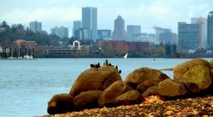 The Waterfront Park In Portland You Must Visit Before Summer's Gone For Good