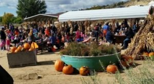7 Harvest Festivals In New Mexico That Will Make Your Autumn Awesome