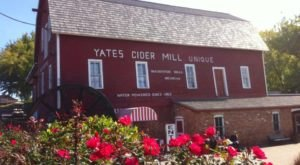 These 6 Charming Cider Mills Around Detroit Will Make Your Fall Complete
