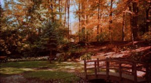 The Little Known Park Near Pittsburgh That Is Calling Your Name
