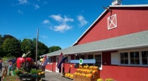 These 6 Charming Apple Orchards In Connecticut Are Great For A Fall Day