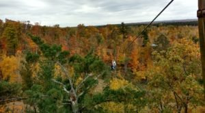 Take A Canopy Tour At Kerfoot Canopy Tour In Minnesota To See The Fall Colors Like Never Before